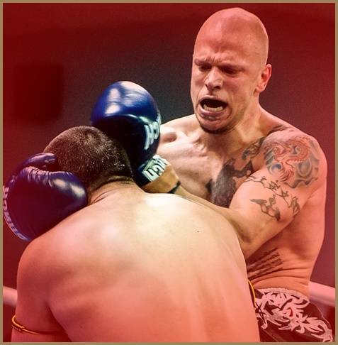 kickboxing or boxing can cause damage through blows to the head