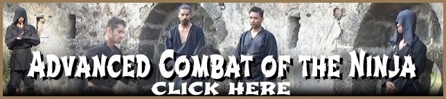 Advanced Ninjutsu Combat Training